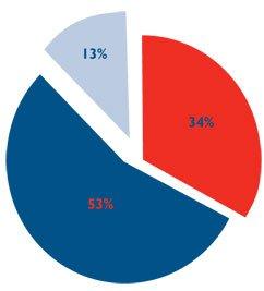 Customer service pie chart
