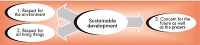 Ideas of sustainable development