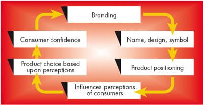 The prosses of branding